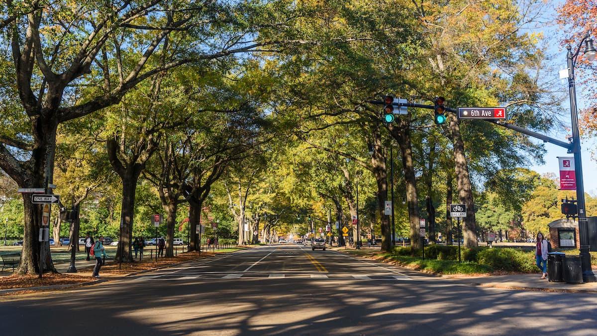 University Boulevard on the UA campus